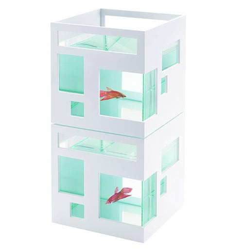 Contemporary Fish Condo